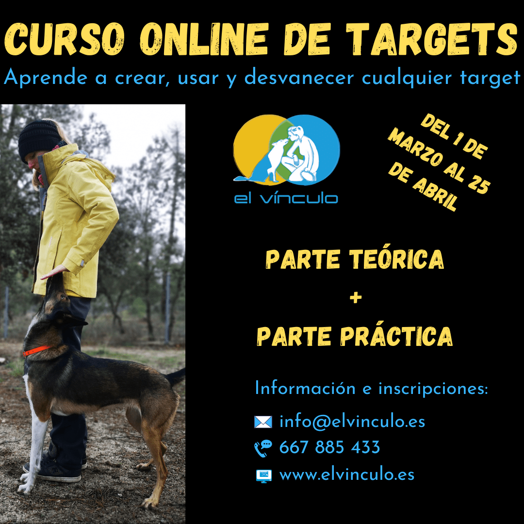 Curso targets online